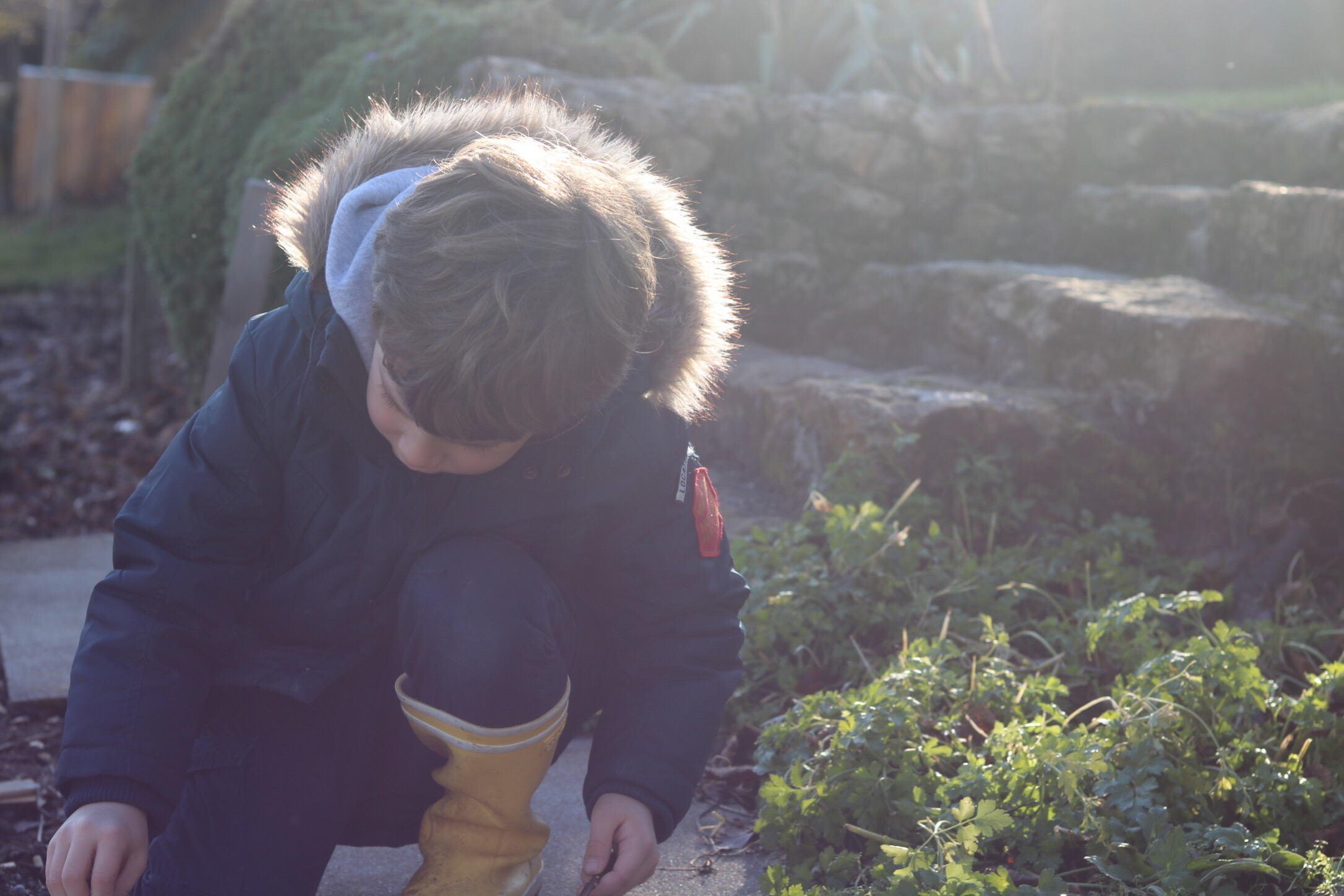 alimentation écologie blog thereseandthekids wwf forgenerationstocome