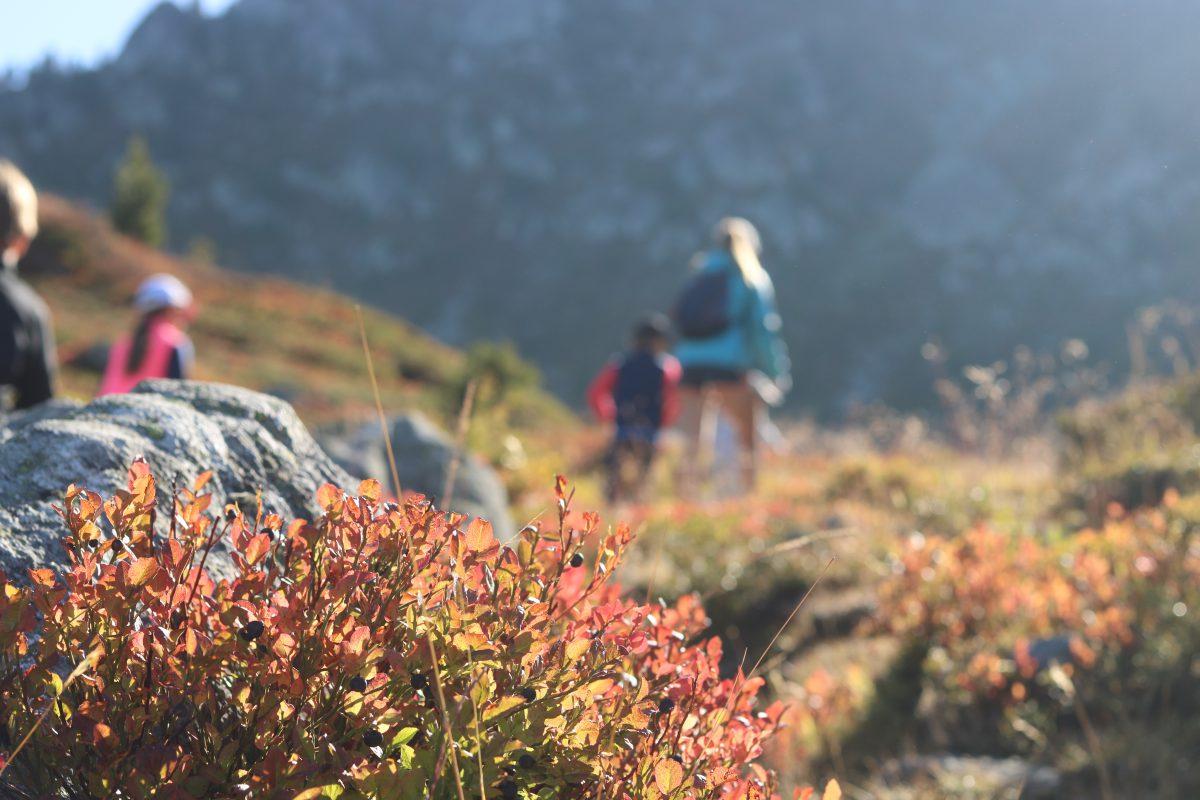 nendaz randonnée famille blog suisse thereseandthekids